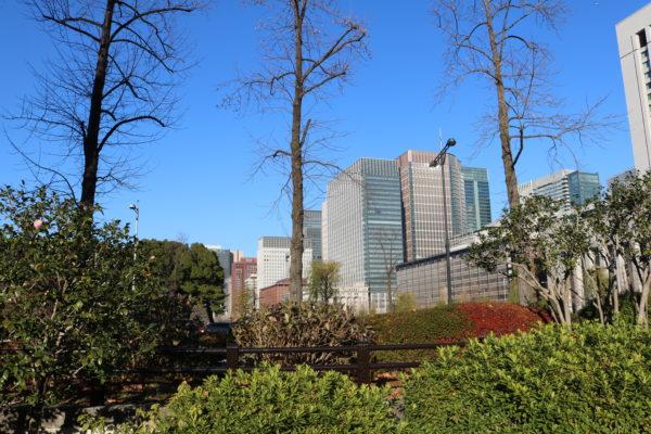 Blick vom Hibiya-Park auf Marunouchi