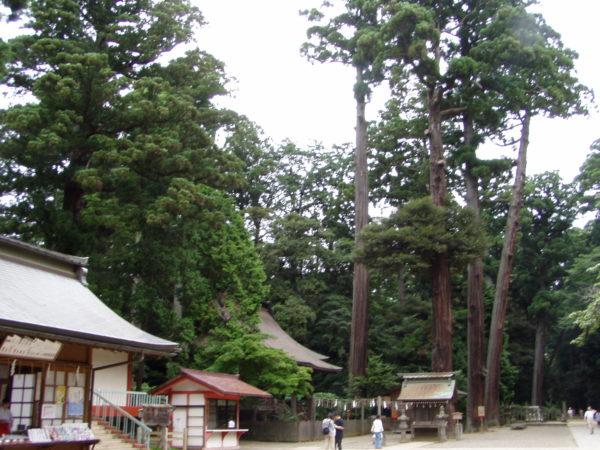 Im Schrein von Kashima