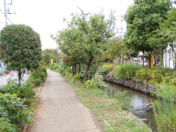 Am Ichinoe-Sakaigawa - der Gesundheitspfad
