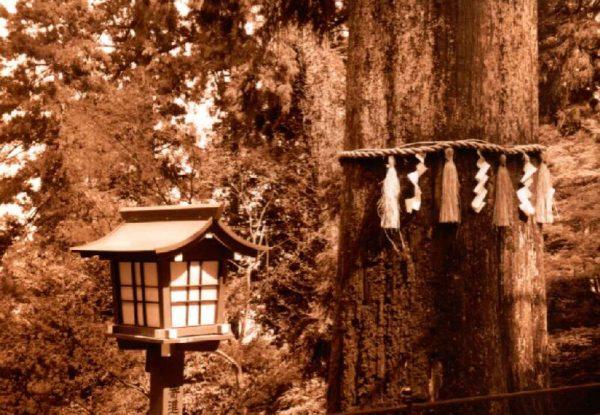 Am Aufstieg zum Yakuō-ji