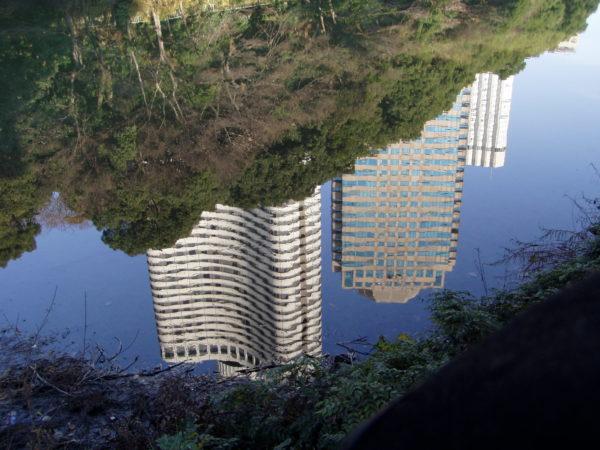 Spiegelbilder im Wassergraben