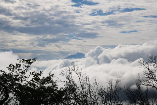 Blick Richtung Fuji-san nahe des Gipfels des Oyama