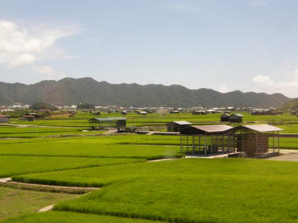 Reisfelder und Berge auf der Insel Awaji