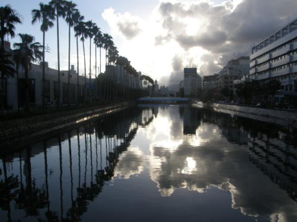 Prunkvolle Palmenprotzerei am Enokuchi-Fluss