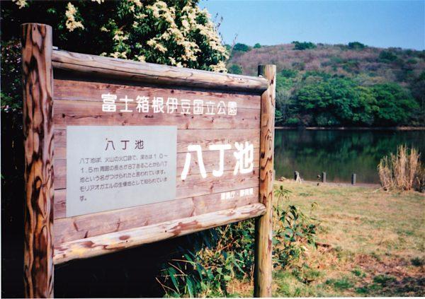 Der Hatchō-Ike - ein flacher Kratersee in den Amagi-Bergen