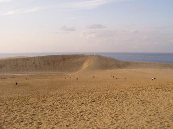 Hauptkamm der Dünen bei Tottori