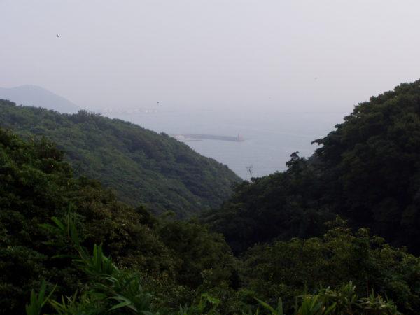 Im Naturschutzgebiet Hirō-san