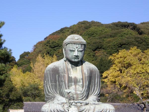 Der 11,5 m hohe, 1252 erbaute Daibutsu (Grosser Buddha) in Kamakura