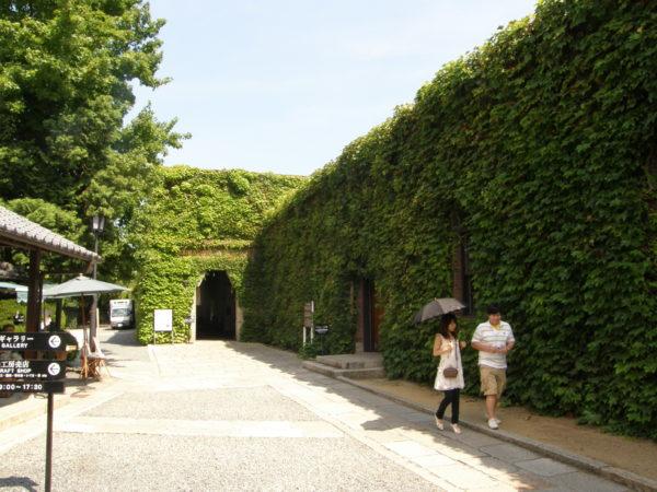 Viel Grün im Ivy Square
