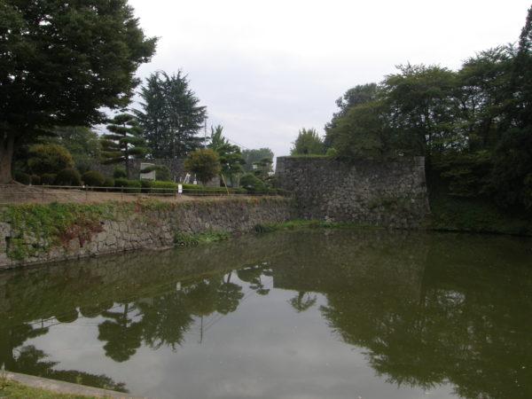 Die Überreste der Burg