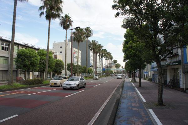 Palmen bestimmen das Bild in Miyazaki