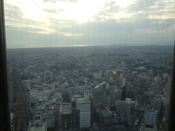 Blick vom Act Tower auf die Stadt