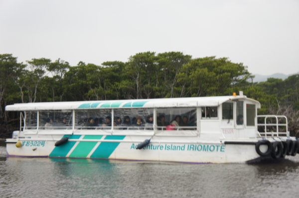 Ausflugsboot in den Mangroven