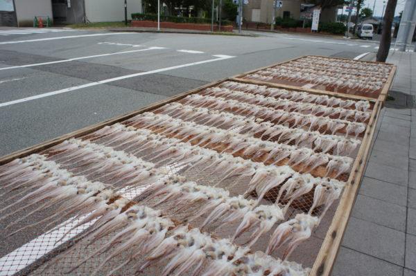 Getrockneter Oktopus in Ryōtsu