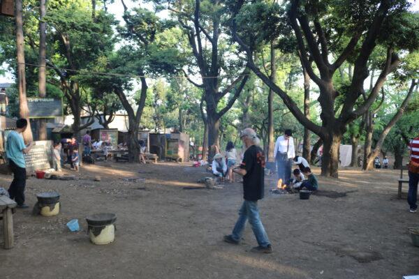 Im Hanegi-Park (羽根木公園) in Setagaya-ku, Istanbul
