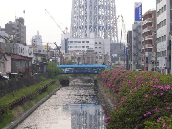 Wirkt wie ein gewaltiger Fremdkörper in Sumida-ku: Der Tokyo Sky Tree