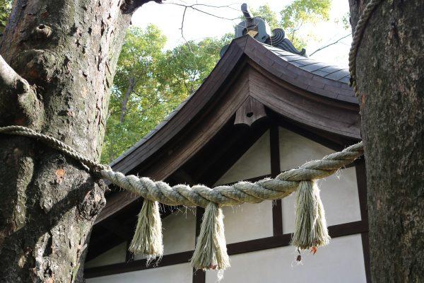 Detailansicht des Miyoshi-no-jinja-Schreins