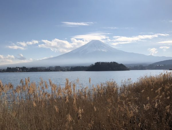 Blick vom Oishi-Park über den Kawaguchi-ko