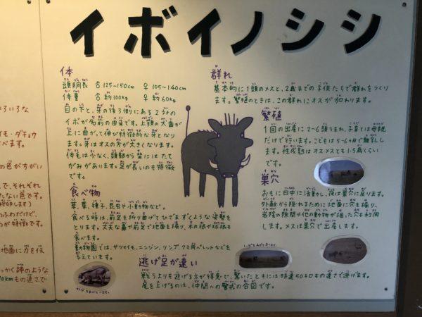 Alle Schilder sind handgemalt, kinderfreundlich geschrieben... und wirklich interessant!