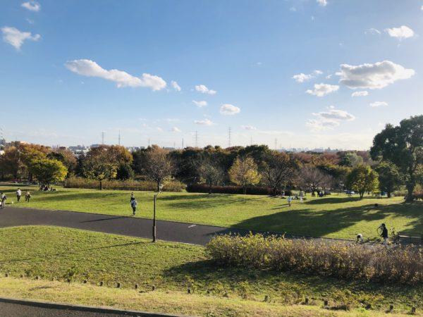 Der geräumige Toneri-Park ist die einzige nennenswerte Erhöhung im Stadtgebiet
