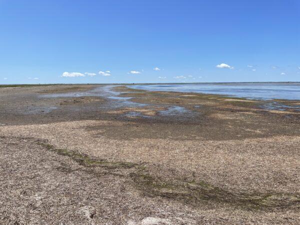 Flacher geht's wirklich nicht: Notsuke-Halbinsel