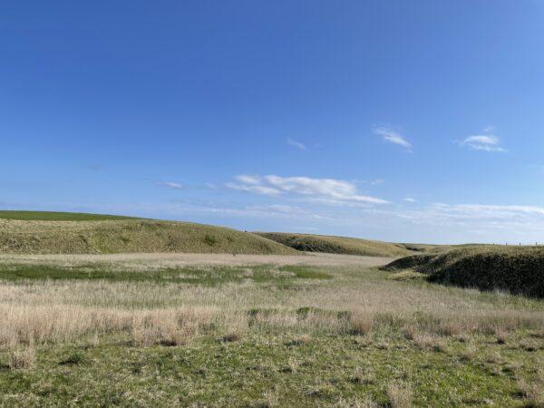 Viel Gras und sanfte Hügel...