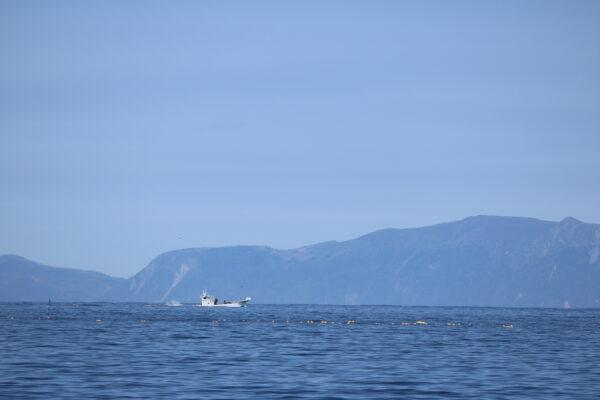 Fischerboot mit der russischen Insel Kunashir im Hintergrund